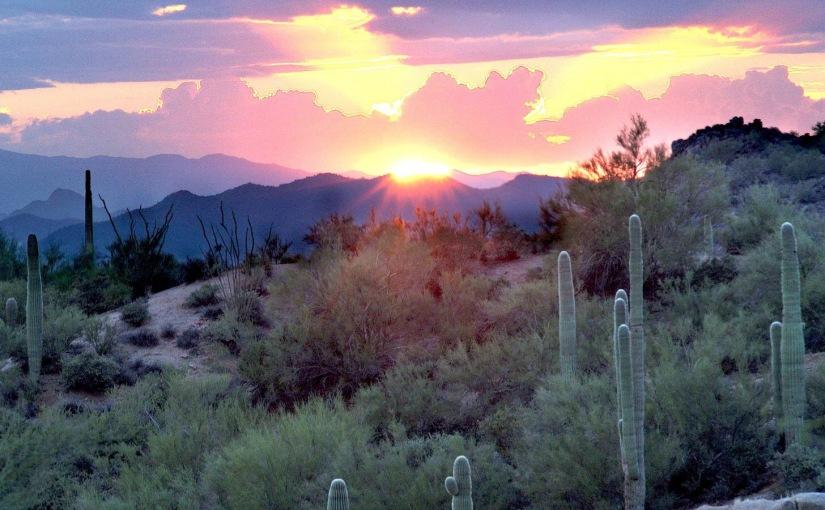 Las Cruces, NM to Phoenix,AZ