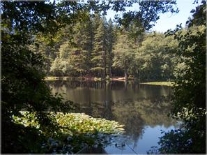 hebo lake